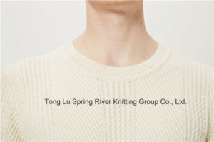 Leather Lamb Wool Nylon Round Neck Men Knit Sweater pictures & photos