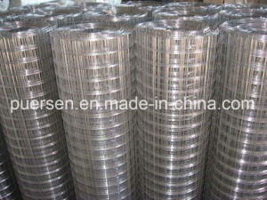 Best Price Hot Dipped 2X2 Galvanized Welded Wire Mesh pictures & photos