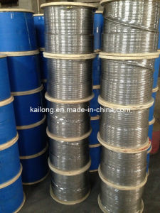 Stainless Steel Wire Rope/AISI 316/ 7*7-8.0mm pictures & photos