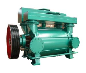 Paper Vacuum Pump (2BE3) pictures & photos