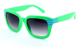 The Popular Style Sunglasses (X0005) pictures & photos