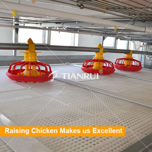 Automatic Broiler Poultry Feeding System for H Type Chicken Cage pictures & photos