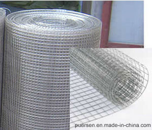 Hot Dipped 2X2 Galvanzied Welded Wire Mesh pictures & photos