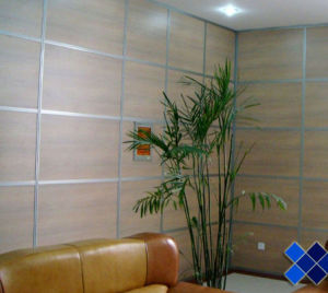 2mm 19mm Acid Etched Glass for Cupboard and Background Wall pictures & photos