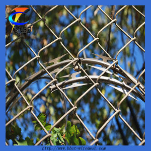 Diamond Decorative Chain Link Fence pictures & photos