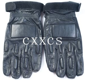Military Tactical Gloves pictures & photos