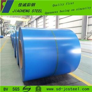 China Supplier Pre-Painted Steel for Roofing with Good Quality