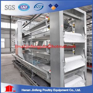 Cage System H Type Made in China pictures & photos