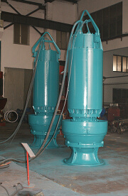 High Capacity Sewage Pump for Waste Water (20000m3/h) pictures & photos