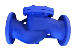 DIN CAST IRON LIFTING CHECK VALVE pictures & photos