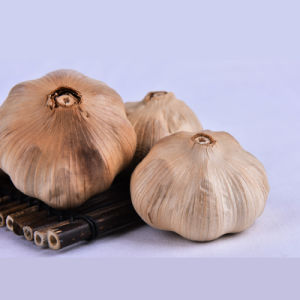 Good Taste Fermented Black Garlic 6 Cm Bulbs (Canned custom) pictures & photos