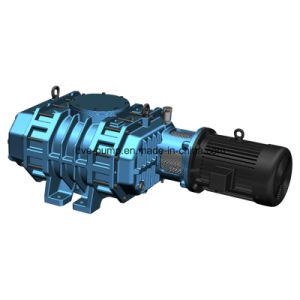 Roots Mechanical Pump Used on PVD Vacuum Coating Machines pictures & photos