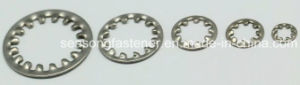 Serrated Lock Washer / Tooth Lock Washer (DIN6797) pictures & photos