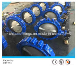 CF8m Disc EPDM Two/Double Stem Lugged Butterfly Valve pictures & photos