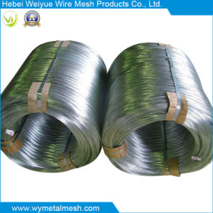 Electro Galvanized Iron Wire in Anping of China pictures & photos