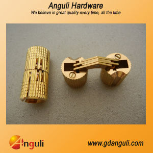 Brass Hinge/Concealed Hinge/Invisible Hinge pictures & photos