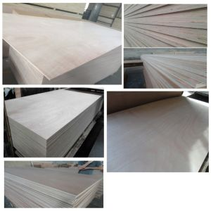 Poplar Okoume Bintangor Birch Veneered Commercial Plywood pictures & photos