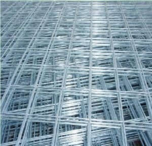 Wire Neting Welded Wire Mesh Galvanzied Mesh pictures & photos