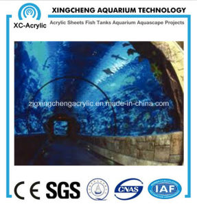 Tunnel for Aquarium pictures & photos