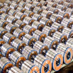 Prime Color Prepainted Steel Coils
