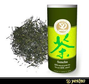 Sencha Green Tea (1-005)