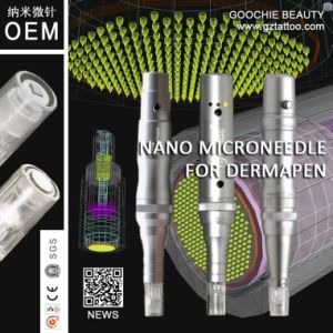 Digital Derma Pen Machine with Nano Microneedle pictures & photos