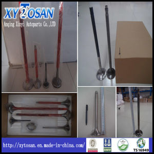 Engine Valve for Marine (ALL MODELS) pictures & photos