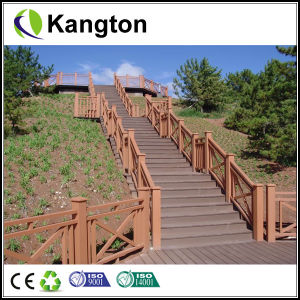 Plastic Outdoor Flooring (WPC decking) pictures & photos
