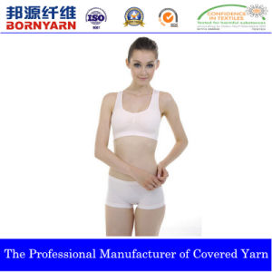 Covered Yarn with Spandex and Nylon for Underwear pictures & photos