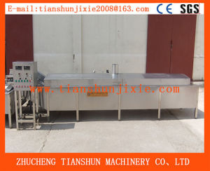 Industrial Automatc Vegetable Potato Banana Chips Seafood Blanching Machine Tstd-60 pictures & photos