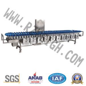 Pz-a-1000g SUS 316 Weighing Food Machine