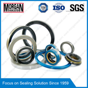 All Kinds of High Speed Rotary Shaft Oil Seal pictures & photos