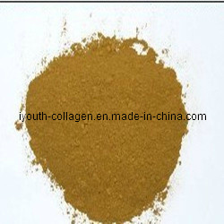 100% Natural Propolis Powder (after purification) pictures & photos