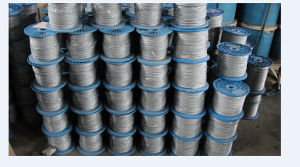Electro Galvanized Steel Rope 1X7 with Small Size 4mm pictures & photos