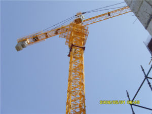 The Cranes China Supply Hstowercrane pictures & photos