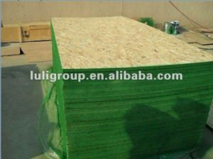 Waterproof Green OSB Board for Sale! pictures & photos
