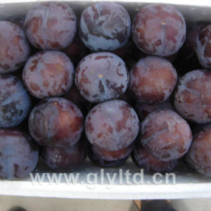Chinese Fresh Sweet Black Plum pictures & photos