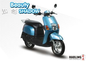 Fashionable Electric Scooter (HLES16-390)