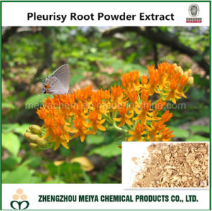 Pleurisy Root Powder Extract From Asclepias Tuberosa pictures & photos