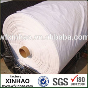 PP Wovencircular Fabric for Making Bags pictures & photos