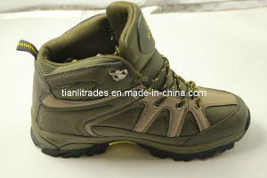Hiking Shoes Hot Selling