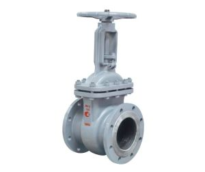 GOST Standard/Russia Standard Cast Steel/Wcb Gate Valve (Z41H-16C) pictures & photos