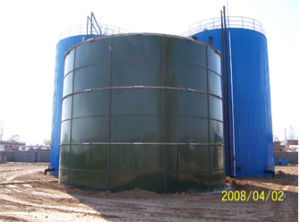 Biogas Project (TYY)