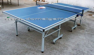 Table Tennis Table DTT9025 pictures & photos