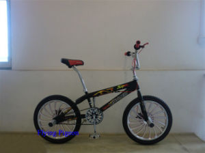 Aluminum Wheel Freestyle Bike (FP-FSB-H030) pictures & photos