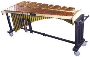 Symphony Orchestra Marimba pictures & photos