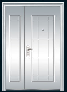 Stainless Steel Door (FXSS-011) pictures & photos
