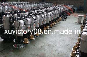 Water Pump (QDX10-16-0.75) pictures & photos