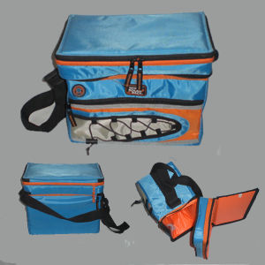 New Design Ice Insulated Cooler Bag pictures & photos