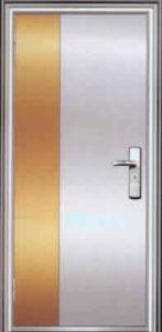 Stainless Steel Security Doors